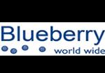 blueberry-rabattkod